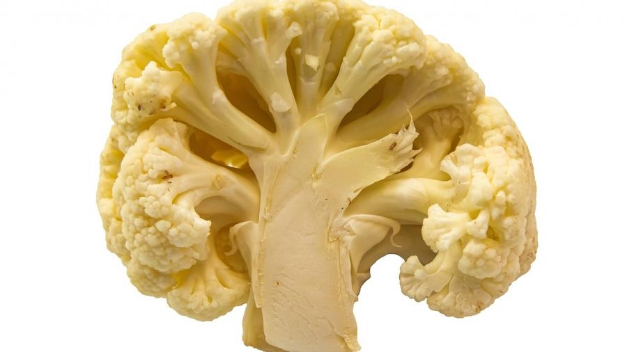cauliflower brain